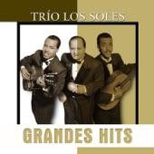 Trio Los Soles - Flor Sin Retoño