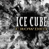 Icon Crowded - Single
