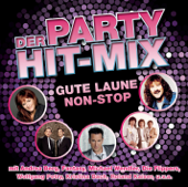 Hit-Mix (Radio Version)