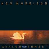 Van Morrison - Daring Night