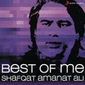 Best of Me: Shafqat Amanat Ali