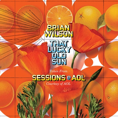 AOL Sessions - EP - Brian Wilson