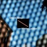 David Gray - This Year's Love