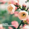 Looking for a Meaning - EP, Calippo