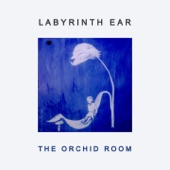 Labyrinth Ear - Amber