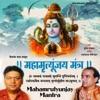 Mahamrutyunjay Mantra Om Tryambakam Yajamahe