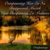 Ontspanning Hier En Nu Rustgevende Muziek Voor Ontspanning En Meditatie