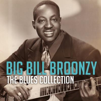 The Blues Collection: Big Bill Broonzy - Big Bill Broonzy