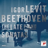 Piano Sonata No. 31 in A-Flat Major, Op. 110: II. Allegro molto artwork