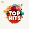 Various Artists - Top Hits artwork