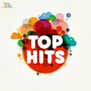 Top Hits - Various Artists - Various Artists