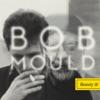 Bob Mould - Beauty  Ruin Album