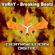 Breaking Beatz - Vorny