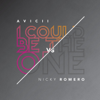 I Could Be the One Nicktim Radio Edit - Avicii & Nicky Romero mp3