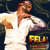 Fela Kuti - Sorrow, Tears &