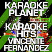 Karaoke Hits Vicente Fernandez (Karaoke Version)