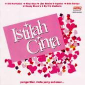 Download Lagu MP3 Anis Suraya - Selamilah Hati Ini