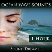 Ocean Wave Sounds - 1 Hour