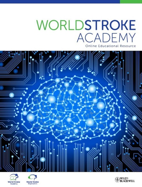 World Stroke Academy Revamped: The Emperor's New Clothes Are Real