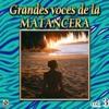 Grandes Voces De La Matancera, Vol. 3