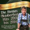 Amadeus Stern - Ein Prosit der Gemütlichkeit (Bierzelt Mix) 插圖