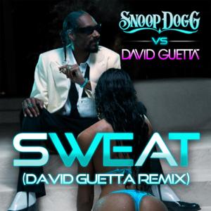 Snoop Dogg & David Guetta - Sweat (Snoop Dogg vs. David Guetta) [Remix]