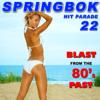 Springbok - An American Dream artwork