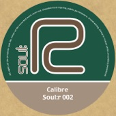 Calibre - Fire & Water