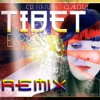 Tibet Express (Remixes) [feat. Claudia] - Single, C12