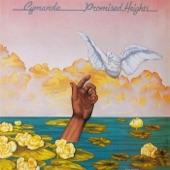 Promised Heights