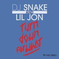 Turn Down For What - Single - DJ Snake & Lil Jon