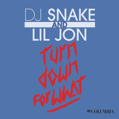 Turn Down for What - Single MP3 Download