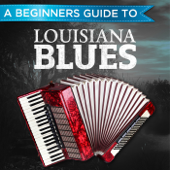 A Beginners Guide to: Louisiana Blues