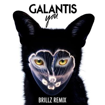 You (Brillz Remix) - Single MP3 Download