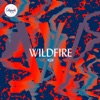 Wildfire, Citipointe Live