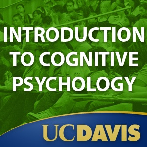PSC100 - Introduction to Cognitive Psychology