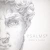 Psalms, Vol. 2 - Shane & Shane