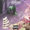 Harambe - Single - Dumbfoundead