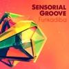 Sensorial Groove - Funkadiba