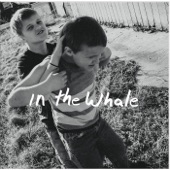 In The Whale - Whiskey, Gin & Beer