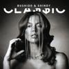 Bushido & Shindy - CLA$$IC Grafik