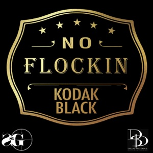 No Flockin - Single Mp3 Download