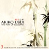 The Way of Samsara (3 Hour Music for Reiki Treatment and Deep Meditation) - Akiko Usui