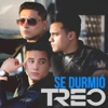 Se Durmió - Single