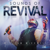 William McDowell - Sounds of Revival artwork