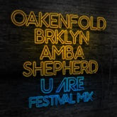 U Are (Festival Mix) [feat. BRKLYN & Amba Shepherd] - Single