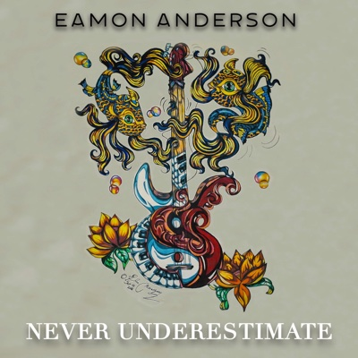 Never Underestimate - Eamon Anderson album