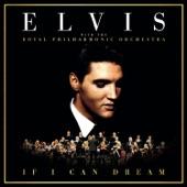 Elvis Presley - Fever
