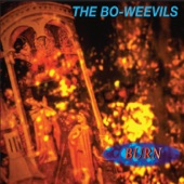 The Bo-Weevils - Dog