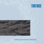 Tortoise - Glass Museum